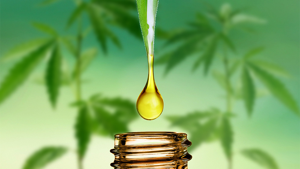 CBD Oil Contain THC